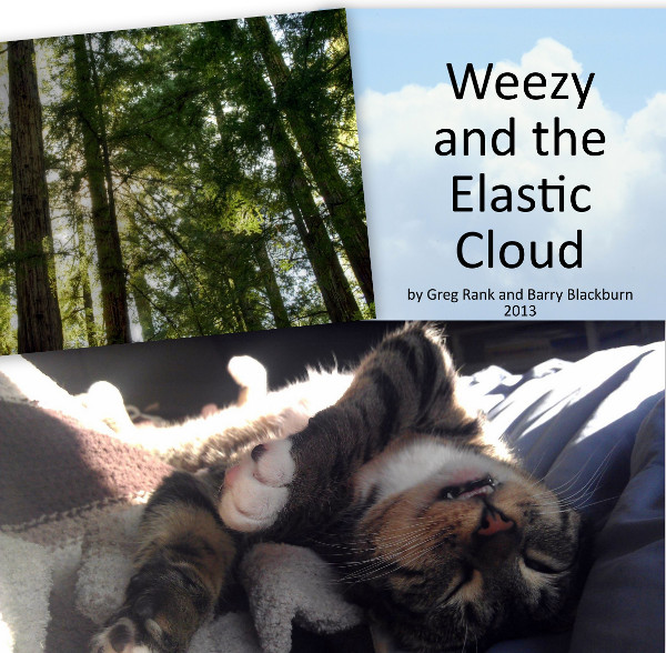Weezy and the Elastic Cloud